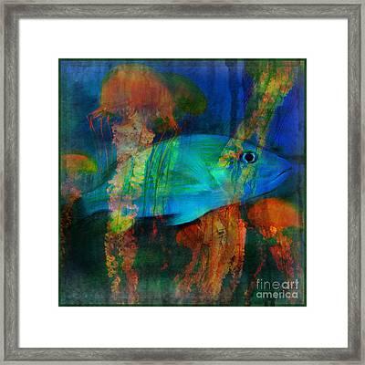 Something Fishy Framed Print by Erika Weber