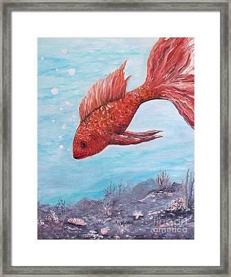 Something Is Fishy Framed Print by Rhonda Lee