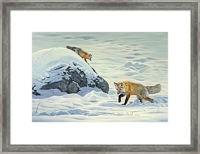 Something Under The Snow Framed Print
