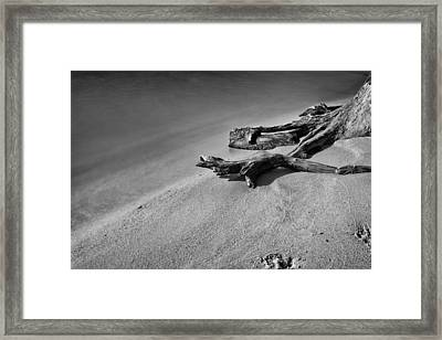 Something Wicked Framed Print