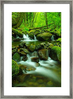 Sometimes Its Best To Sit And Dream Framed Print by Jeff Swan