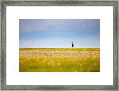 Sometimes We All Walk Alone Framed Print by Karol Livote
