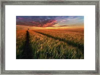 Somewhere At Sunset Framed Print