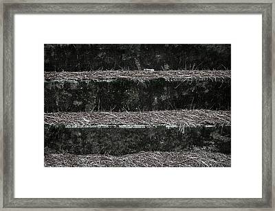 Somewhere Between The Sun And The Moon Framed Print