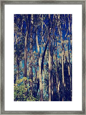 Somewhere Only We Know Framed Print by Laurie Search