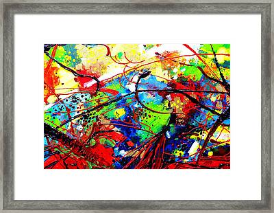 Somewhere Over The Rainbow  II Framed Print by John  Nolan