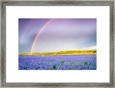 Somewhere Over The Rainbow - Wildflower Field In Texas Framed Print