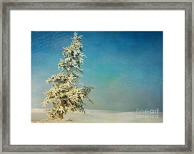 Somewhere Framed Print by Beve Brown-Clark Photography