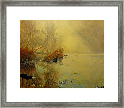 Somewhere Framed Print by Svetla Dimitrova
