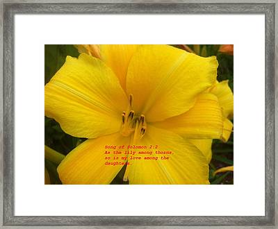 Framed Print featuring the photograph Song Of Solomon 2  2 by Saribelle Rodriguez