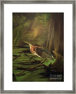 Song Of The Everglades Framed Print