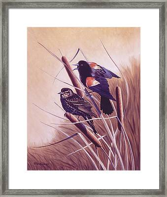 Song Of The Marsh Framed Print by Richard De Wolfe