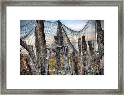 Song Of The Sea Framed Print