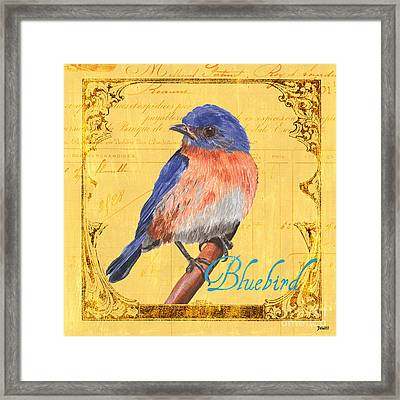 Colorful Songbirds 1 Framed Print