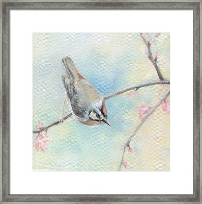 Framed Print featuring the painting Songbird by Natasha Denger
