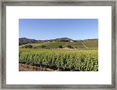 Sonoma County Vineyards Framed Print by Carol M Highsmith