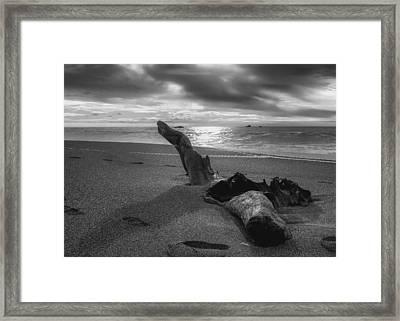 Sonoma Pacific Framed Print