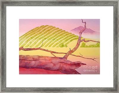 Sonoma Framed Print by Robert Hooper