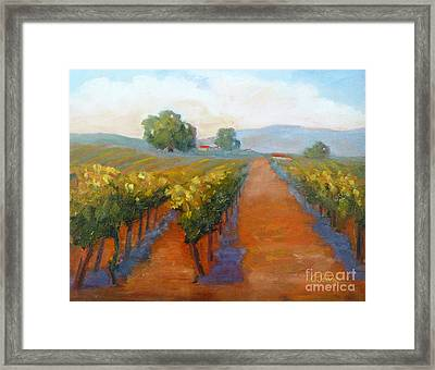 Sonoma Vineyard Framed Print by Carolyn Jarvis