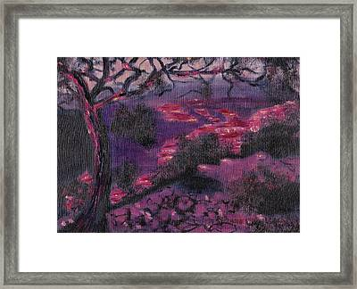 Sonora Desert Framed Print by Suzanne  Marie Leclair