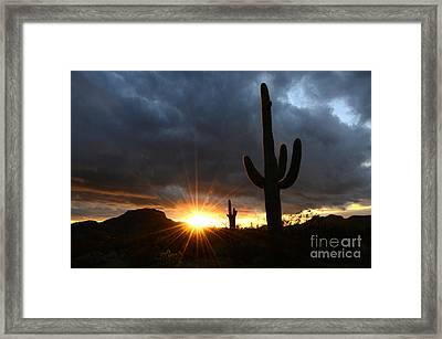 Sonoran Desert Rays Of Hope Framed Print by Bob Christopher
