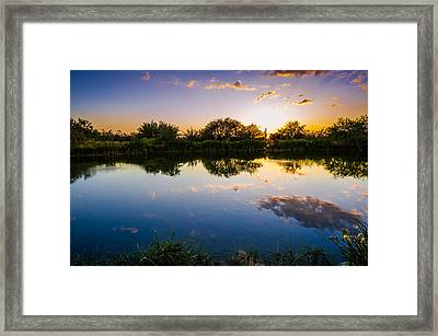 Sonoran Desert Sunset Reflection Framed Print by Scott McGuire