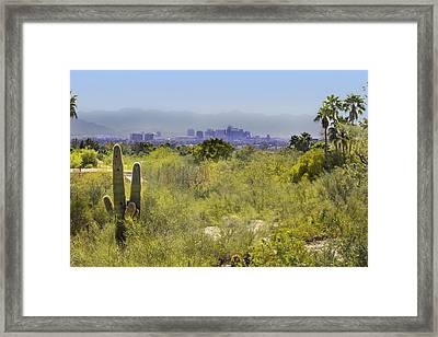 Sonoran Desert With Phoenix Skyline Framed Print