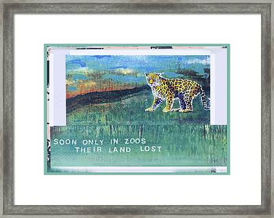Soon Only In Zoos  Their Land Lost Framed Print by Mary Ann  Leitch