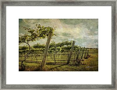 Soon There Will Be Wine Framed Print by Jeff Swanson