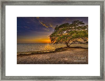 Soothing Light Framed Print by Marvin Spates