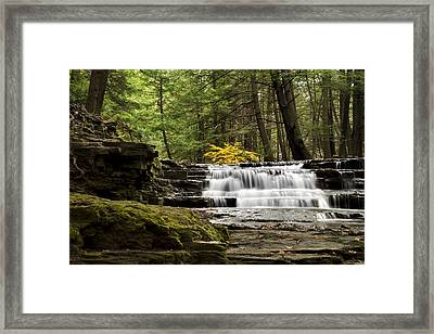 Soothing Waters Framed Print by Christina Rollo
