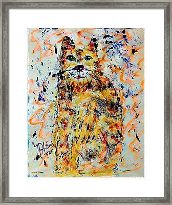 Sophisticated Cat 3 Framed Print