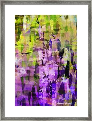 Sophora Framed Print