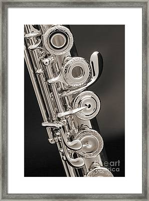 Soprano Flute Music Instruments Photo In Sepia  3441.01 Framed Print