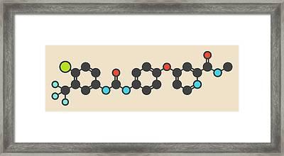 Sorafenib Cancer Drug Molecule Framed Print by Molekuul