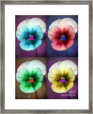 Sorbet Viola Pop Art Framed Print by J McCombie