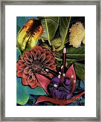 Sorrellism Collage 1 Framed Print by Susan Sorrell