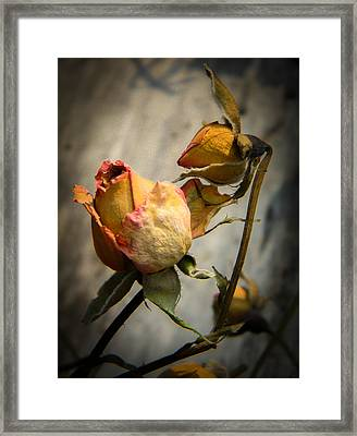 Sorrow Dance Framed Print