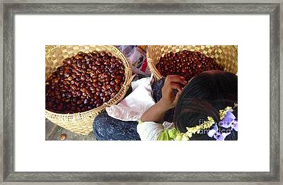 Framed Print featuring the photograph Sorting Water Chestnuts Zay Cho Street Market 29th Street Mandalay Burma by Ralph A  Ledergerber-Photography