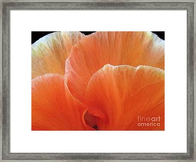Framed Print featuring the photograph Soul Desire by Jean OKeeffe Macro Abundance Art