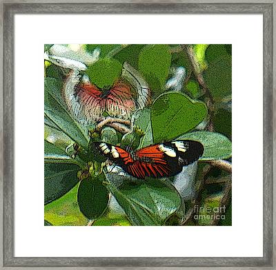 Soul From My Wings Framed Print