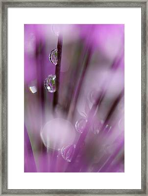 Soul In Rain Framed Print by Tracy Male