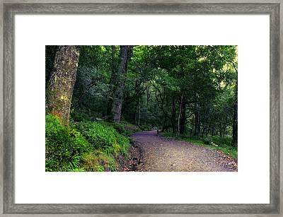 Soul Journey. Glendalough. Ireland Framed Print by Jenny Rainbow