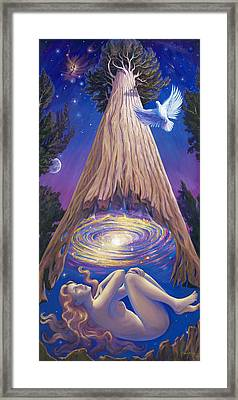 Soul Tree Framed Print by Brenda Ferrimani