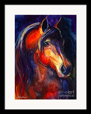 Equestrian Commissions Framed Prints