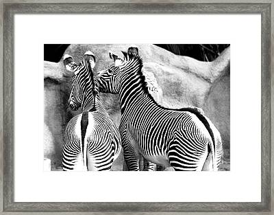 Framed Print featuring the photograph Soulmates by Kristine Merc
