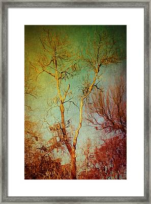 Souls Of Trees Framed Print