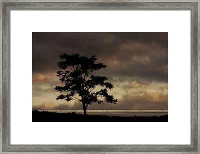 Sound Light Framed Print by Ron Jones