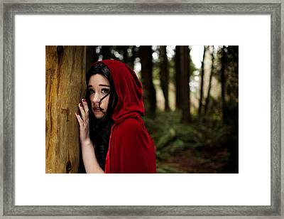 Framed Print featuring the photograph Sounds In The Woods by Lisa Knechtel