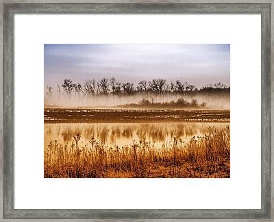 Sounds Of Silence Framed Print by Tom Druin